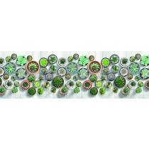 Tappeto ciniglia digitale cactus vasetto piante grasse