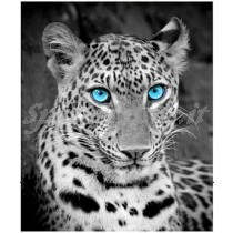 plaid digitale leopardo