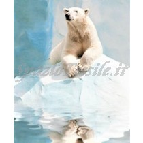 plaid digitale orso